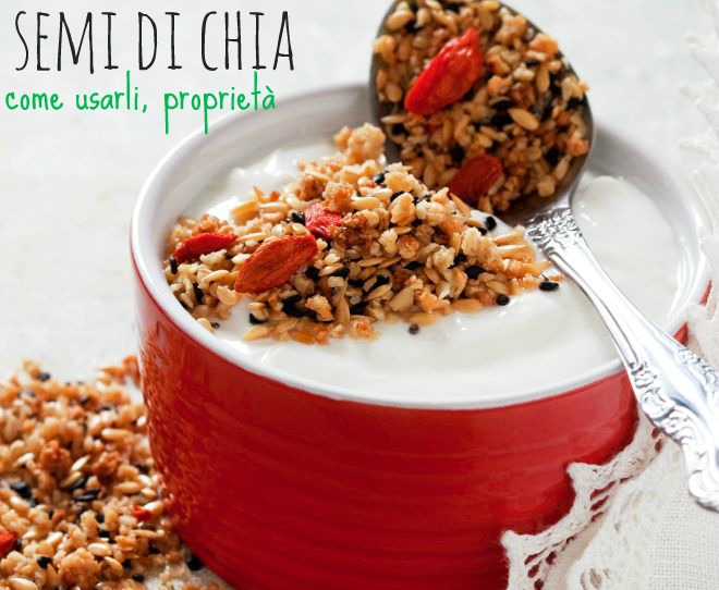 semi-di-chia-come-usarli-proprieta
